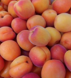Offer: Spanish Apricots (5kg)
