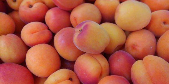 Spanish Apricots (5kg)