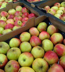 Offer: Worcester Apples (7kg)