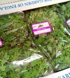 Offer: Baby Kale (500g)