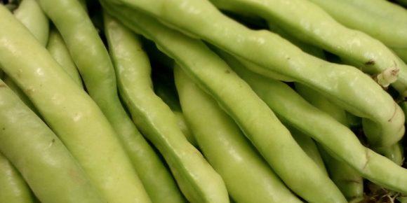 Spanish Broad Beans (4kg)