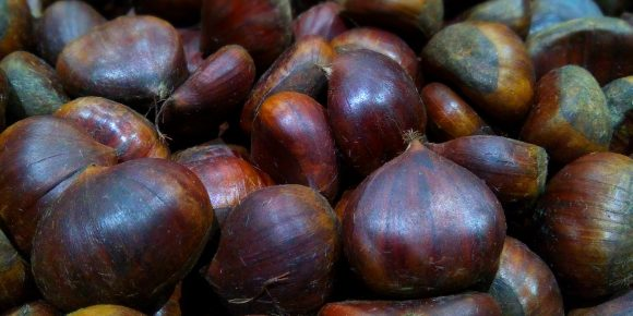 Turkish Chestnuts (4kg)