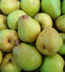 Offer: Belgian Comice Pears (12kg)