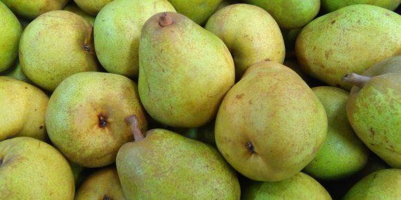 Belgian Comice Pears (12kg)