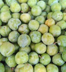 Offer: Spanish Greengages (9kg)