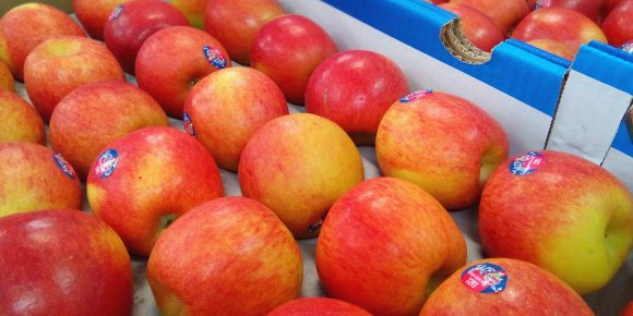 New Zealand Jazz Apples
