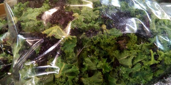 UK Pre Packed Mixed Kale (10 x 250g)