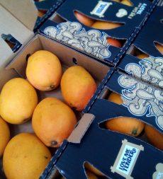 Offer: Honey Mangoes