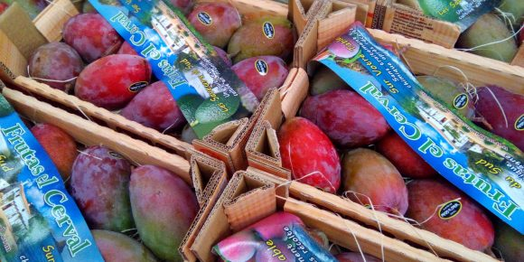 Osteen Mangoes (12's / 4kg)