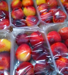 Offer: Pre Packed Nectarine & Peaches 10x500g