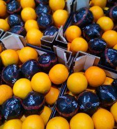 Offer: Italian Blood Oranges (7kg)