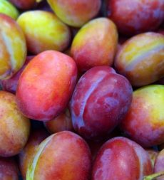 Offer: English Victoria Plums (5.45kg)