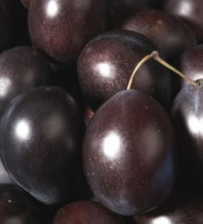 Offer: South African Red Plums (6kg)