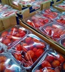 Offer: Pre Packed UK Baby Plum Tomato