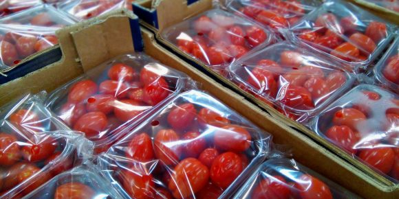 Pre Packed UK Baby Plum Tomato