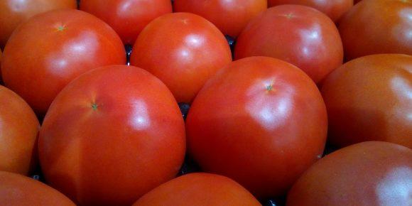 Spanish beef tomatoes (7kg)