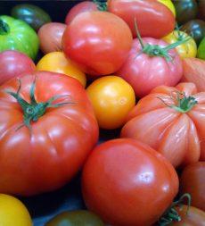 Offer: UK Heritage Tomatoes (3kg)