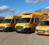 Going for Gold with our Fun and Fruity Vans!